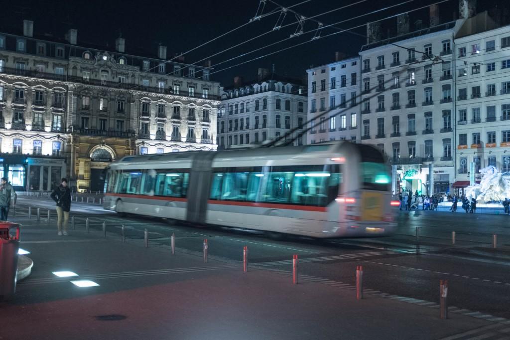 Lyon, à la découverte du cardon